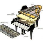 Czym się różni pianino od fortepianu?