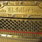 Seiler Variations.
