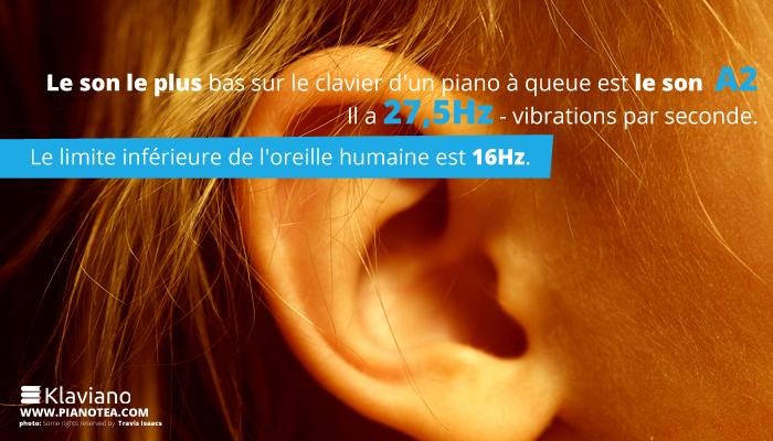 Le son le plus bas sur le clavier d'un piano à queue est le son A2. il a 27,5Hz - vibrations par seconde.Le limite inférieure de l'oreille humaine est 16Hz.