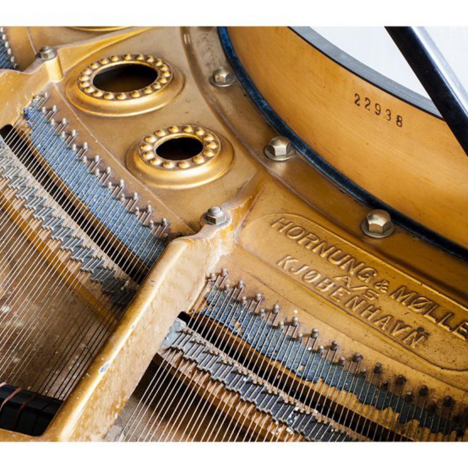 Numer seryjny na wewnętrznej części korpusu fortepianu
